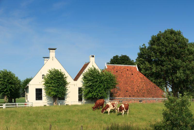 Een boerderij kopen? Stel uzelf deze 3 vragen