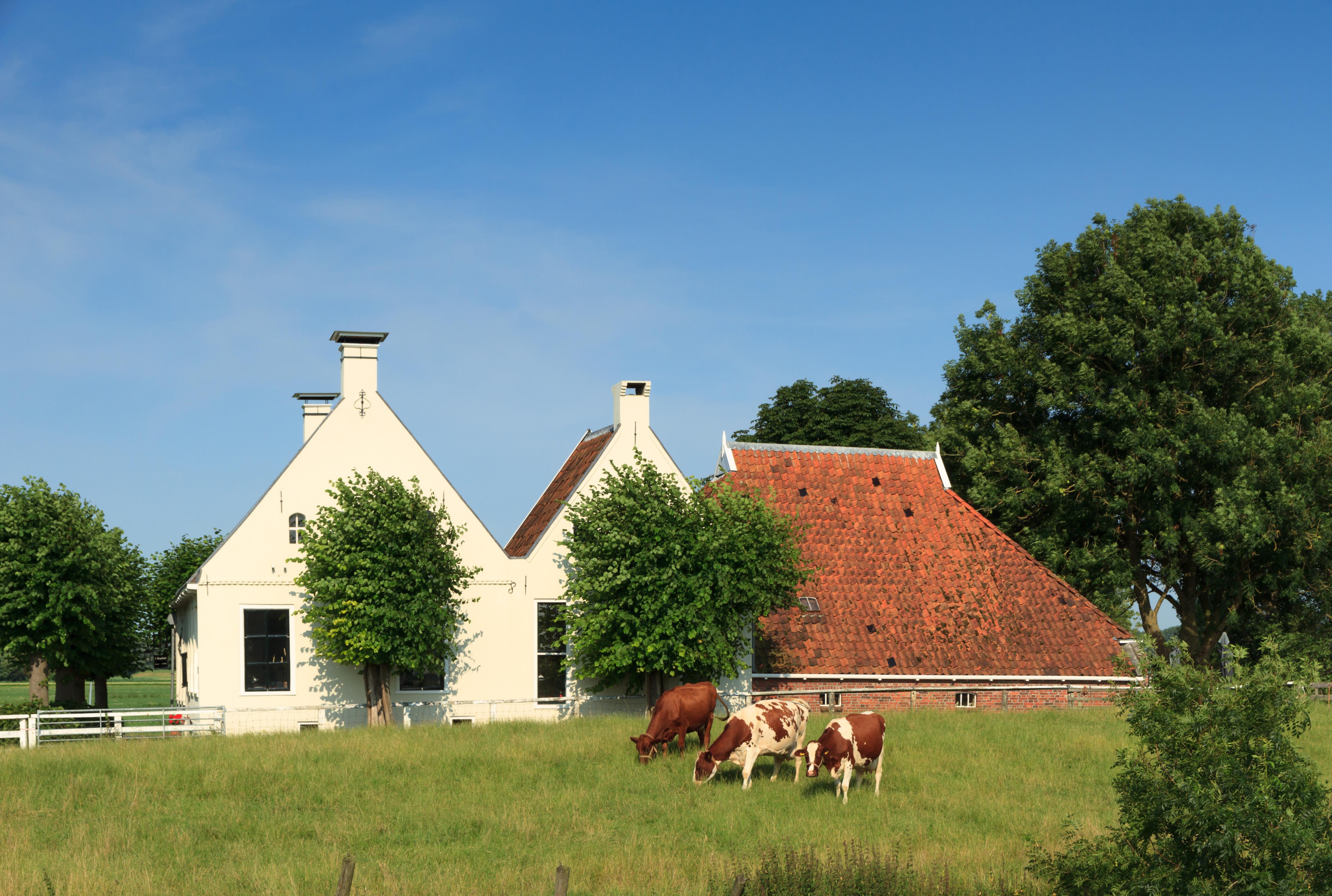 Agrarisch Makelaar Drenthe
